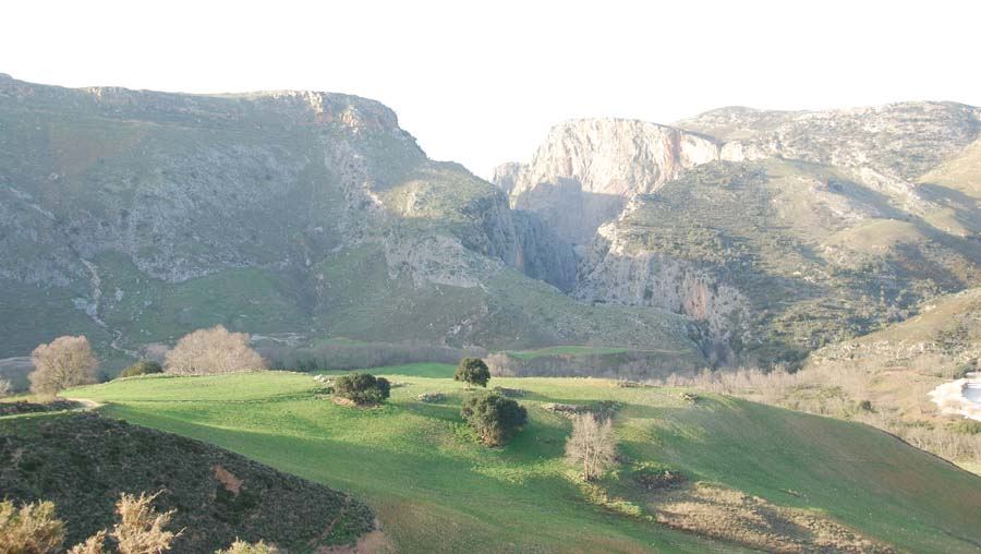 Mountain Kedros – Gorge of Prasses
